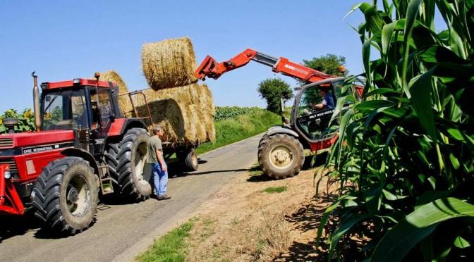 agricole-en-leger-rebond-en-2014-web-tete-0204016718701