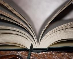 Réforme pénale : les socialistes contre la réduction de peines par la lecture