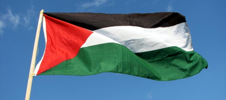 Résolution sur la Palestine : je voterai contre.
