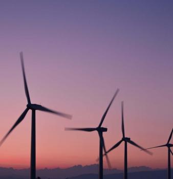 [TRIBUNE] Inscription du crime d'écocide dans le projet de loi climat | VALEURS ACTUELLES